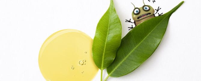 fórmula con aceite de árbol del té nosaprotect